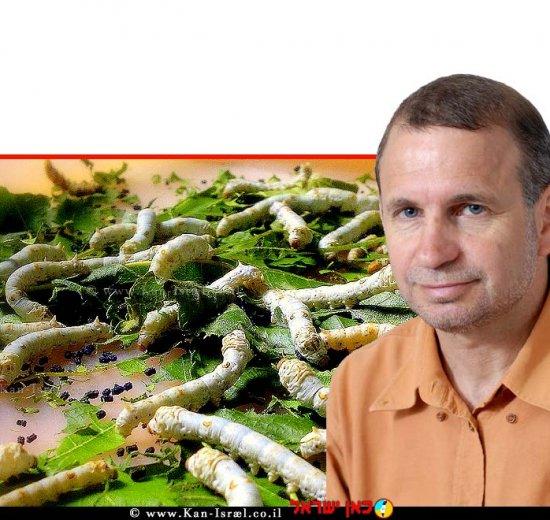 פרופ' אמיר שגיא - נשיא האגודה הבינלאומית לרבייה והתפתחות בחסרי חוליות | עיבוד ממחושב: שולי סונגו©